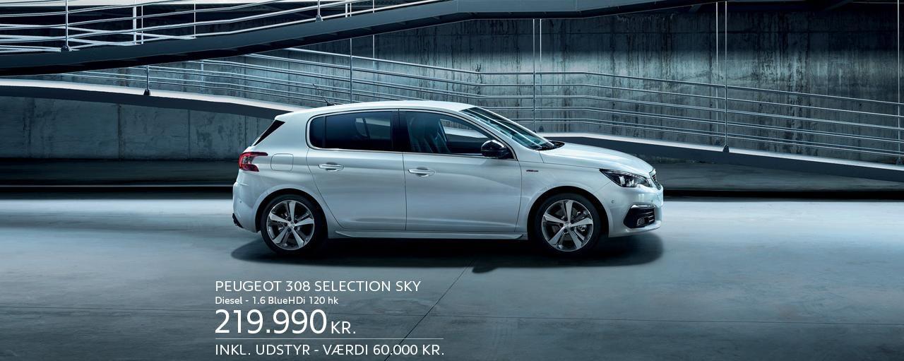 308 Selection sky