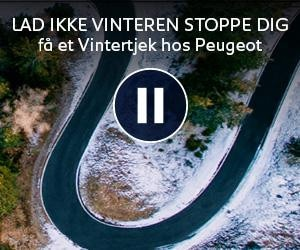 Peugeot Vintertjek